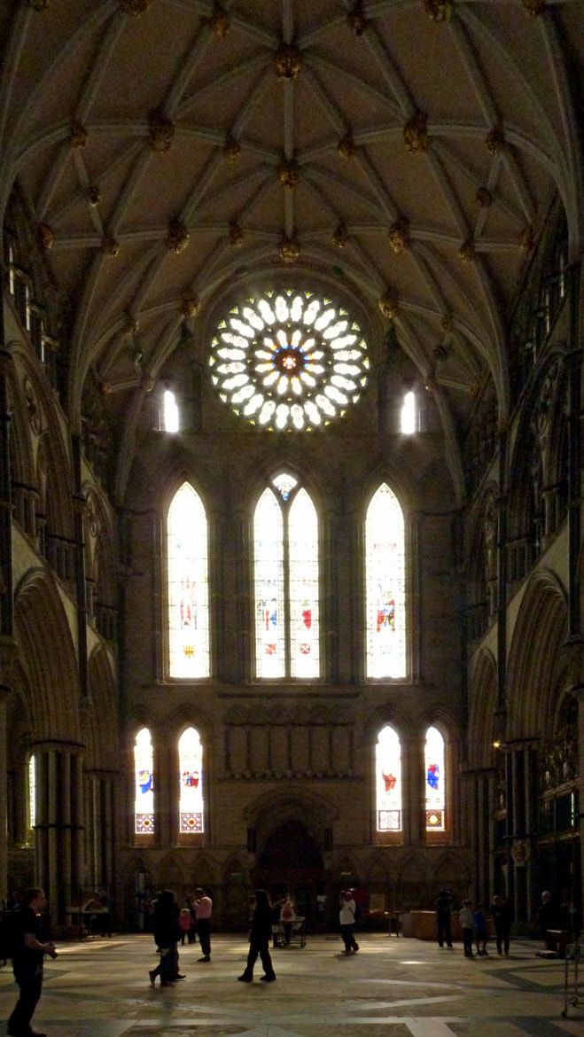 Photograph York Minster, South Transept by S Wilkins on 500px
