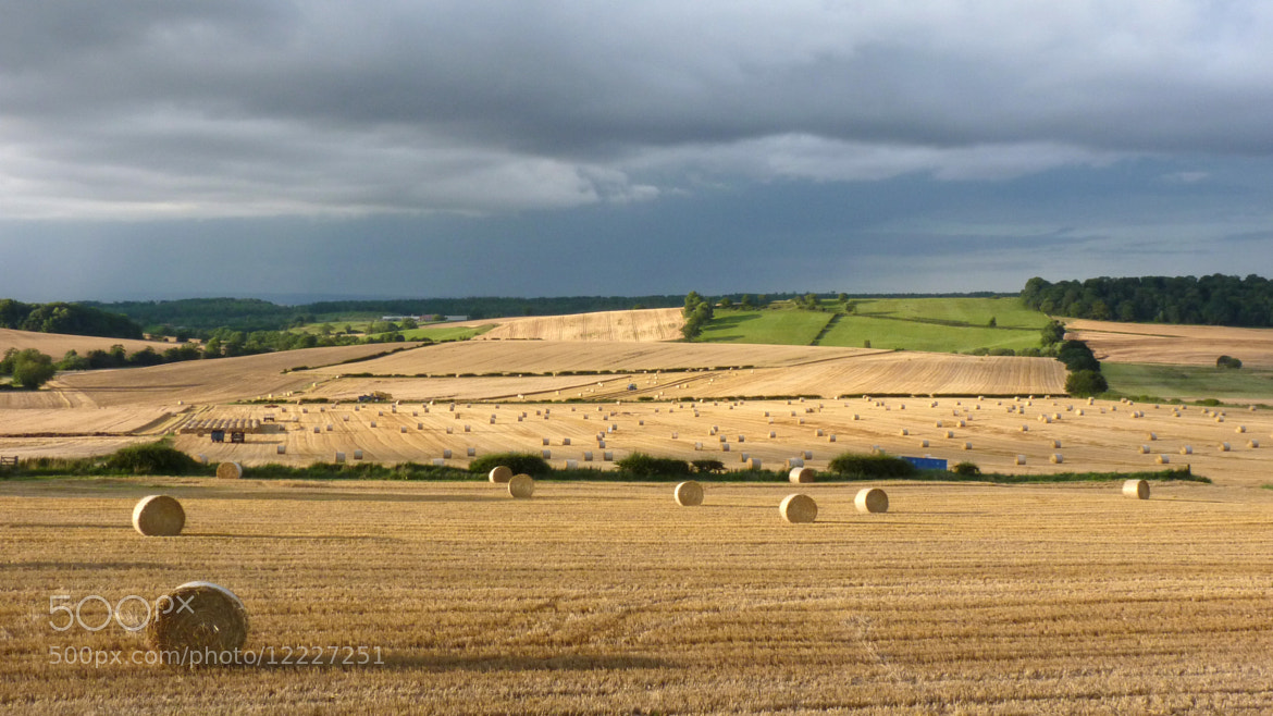 Photograph Terrington Harvest by S Wilkins on 500px