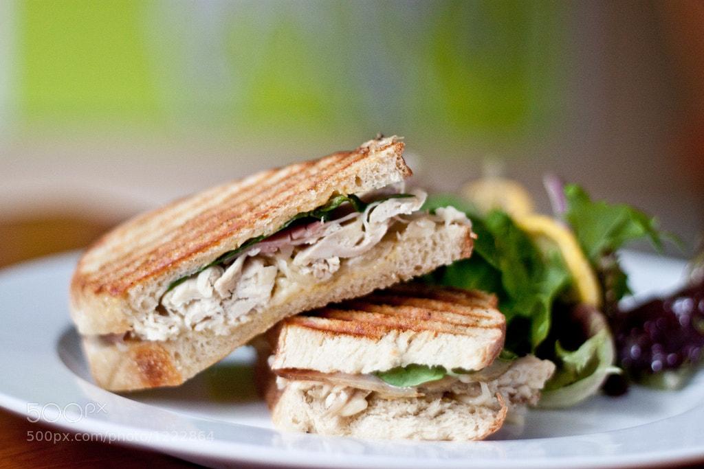 Photograph Chicken Cordon Bleu Sandwich by Stephanie Rinehart on 500px