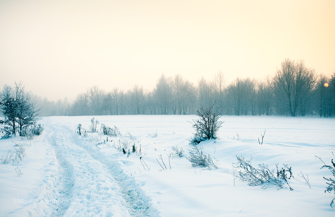 Photograph Winter Wonderland by Magdalena (Jessica) Krynicka on 500px