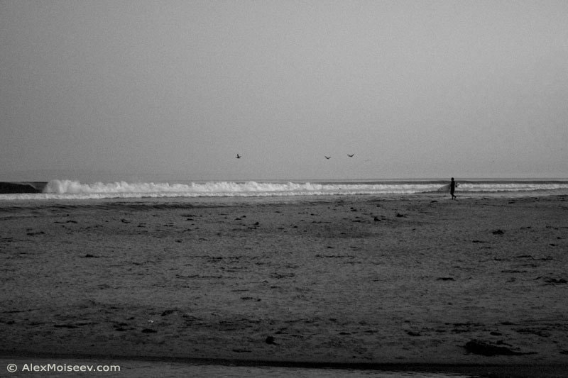Photograph Lonely Surfer by Alex Moiseev on 500px