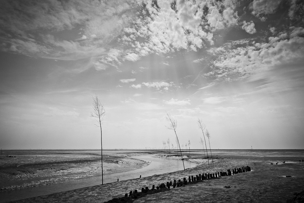 Photograph mudflat by Markus Münch PHOTOGRAPHIE on 500px