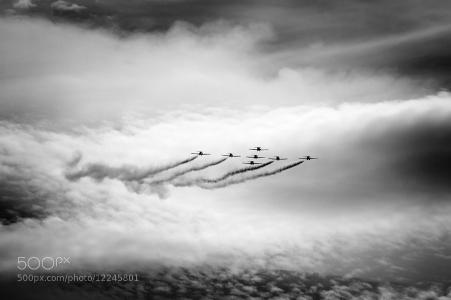 Photograph Snowbirds  by Morten  Byskov on 500px