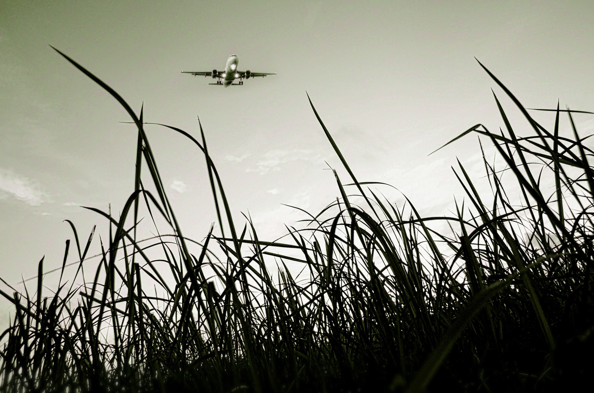 Photograph Ready to land! by Vey Telmo on 500px