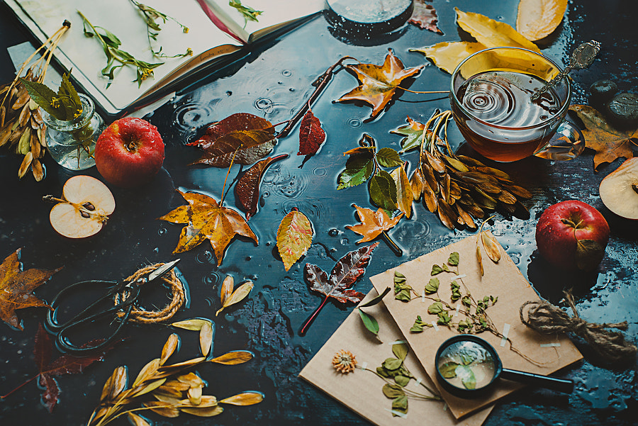 Autumn inside by Dina Belenko on 500px.com