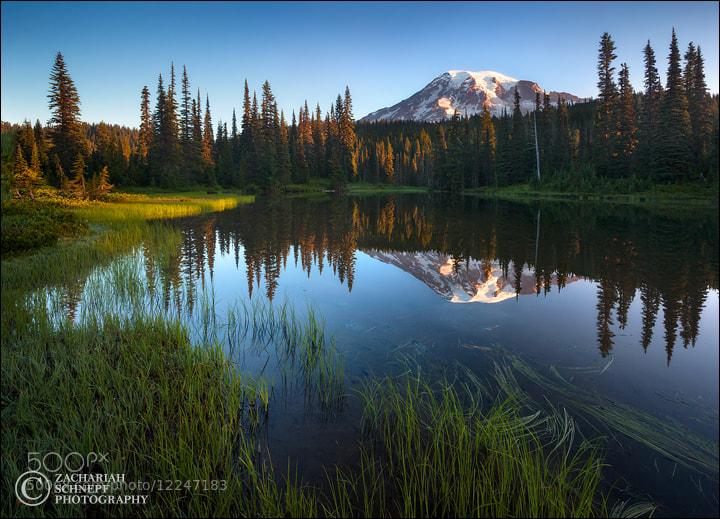 Photograph Pristine Rainier Reflection by Zack Schnepf on 500px