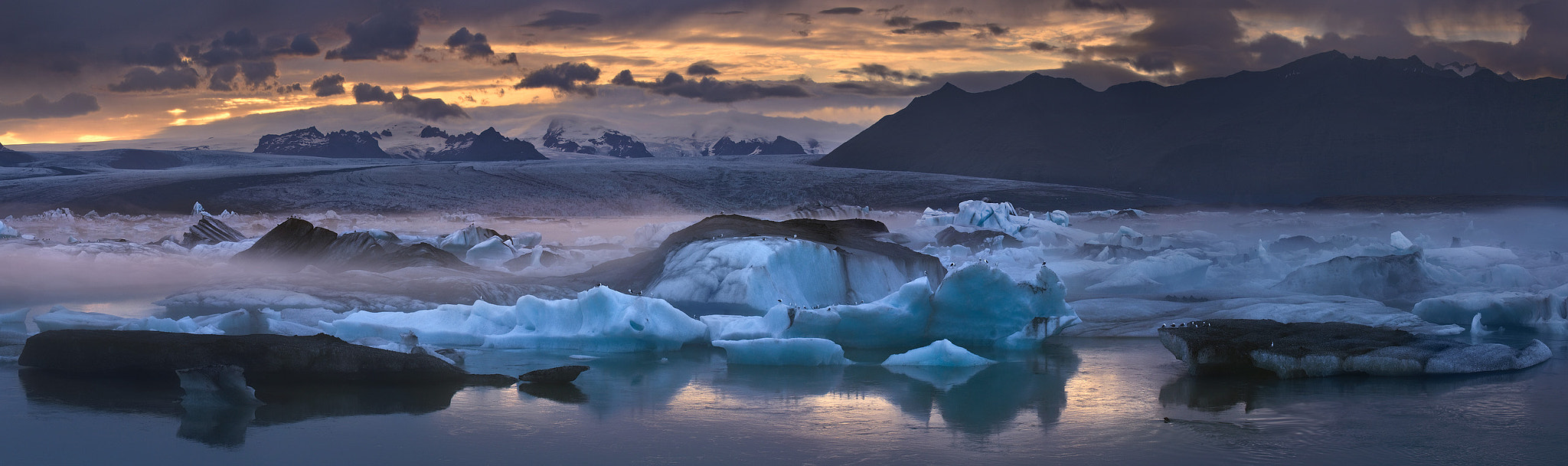 Photograph Foggy panorama with icebergs and other inhabitants of the lagoon by Mike Reyfman on 500px