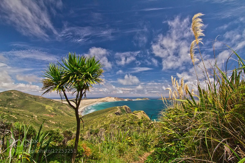 Photograph Cape Reinga by timo eichler on 500px