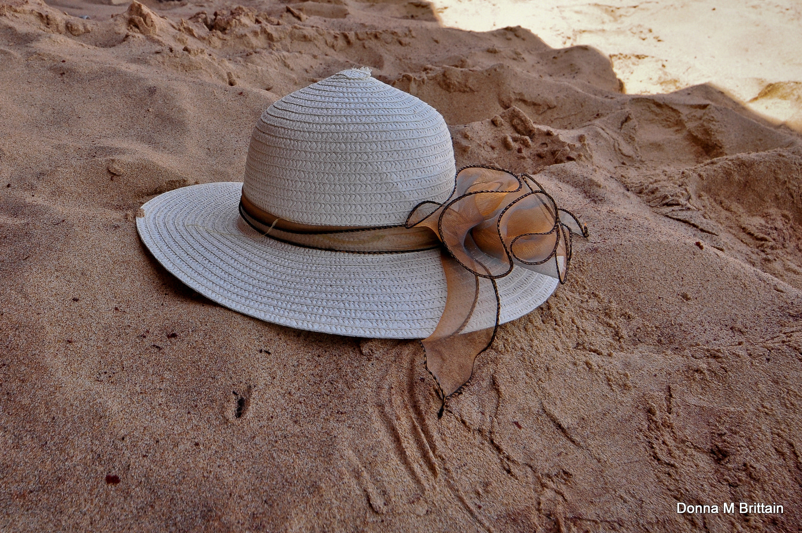 Photograph So hot, even my hat needs shade by Donna Brittain on 500px