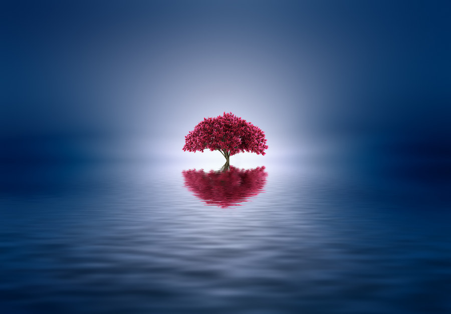 Shanti by Josep Sumalla on 500px.com