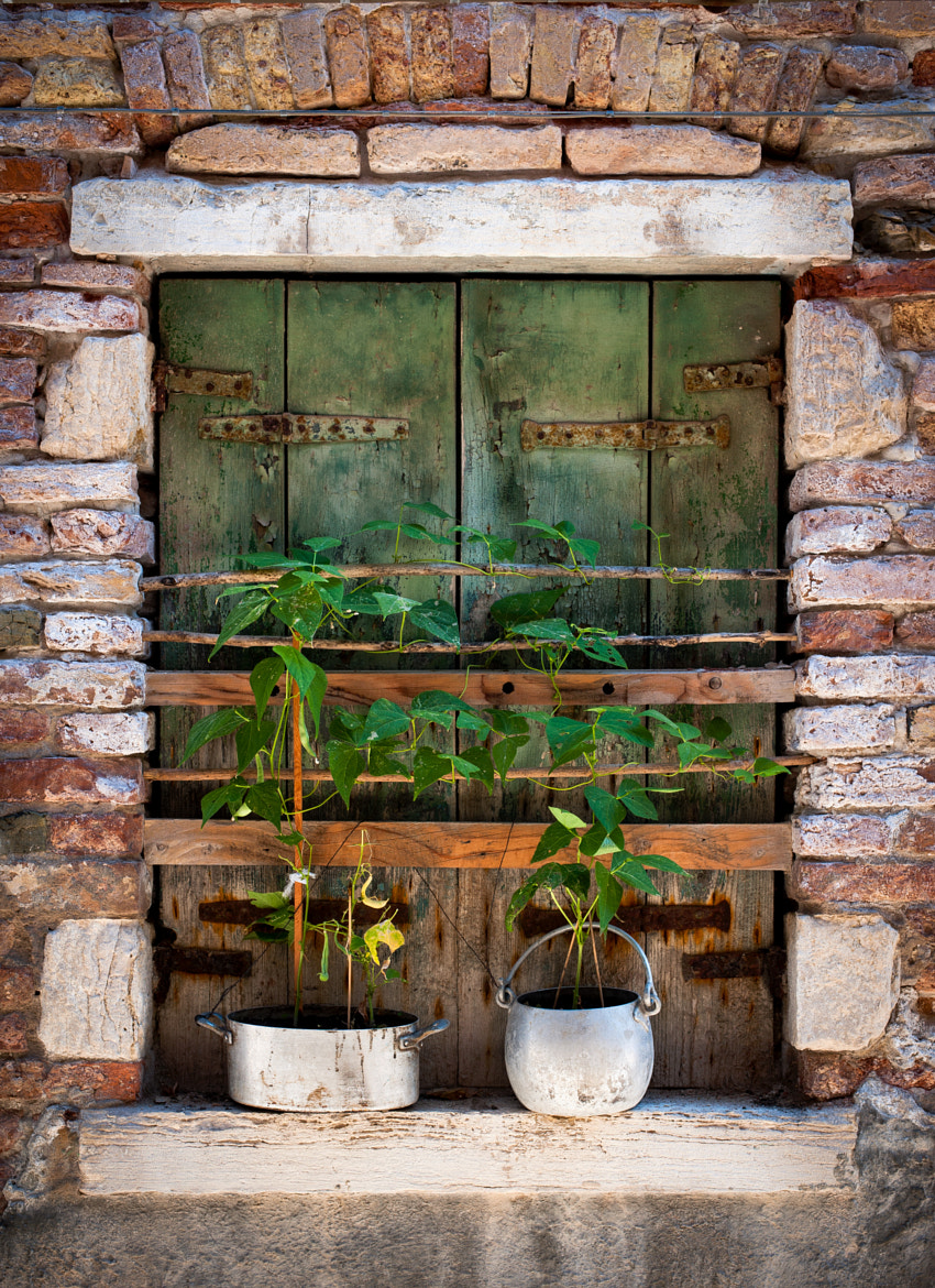 Photograph Window by Matteo Cargasacchi on 500px
