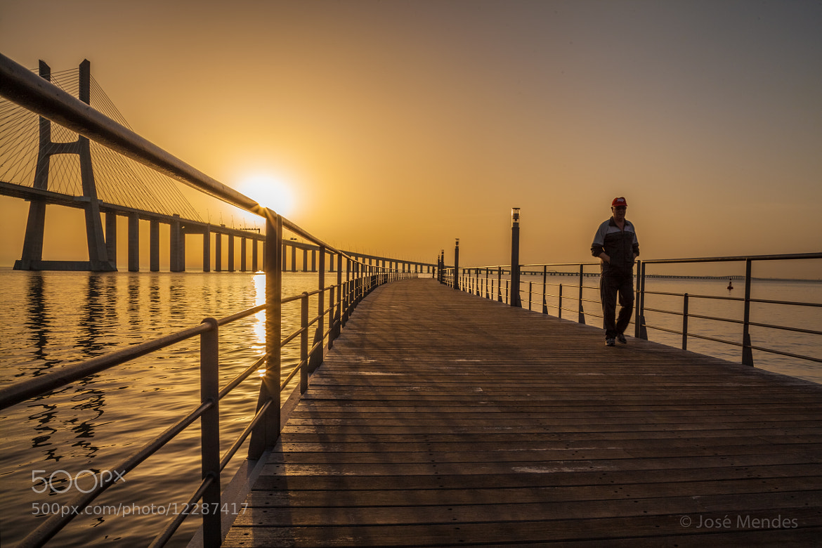 Photograph Morning Glory by José Mendes on 500px
