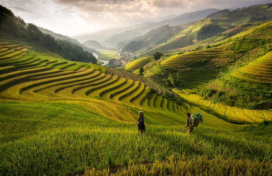 Sunset in Mu Cang Chai valley by Pham Ty on 500px.com