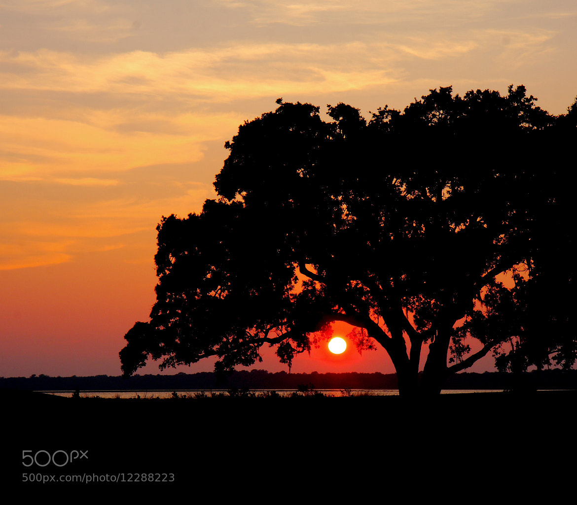Photograph Sunset Over Kiawah River by Ash Lindsey on 500px
