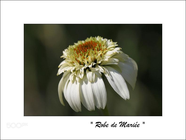 "Photograph "" Robe de Mariée "" by Caroline Racine on 500px"