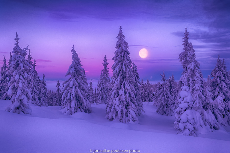Winter Dream by Jørn Allan Pedersen on 500px.com