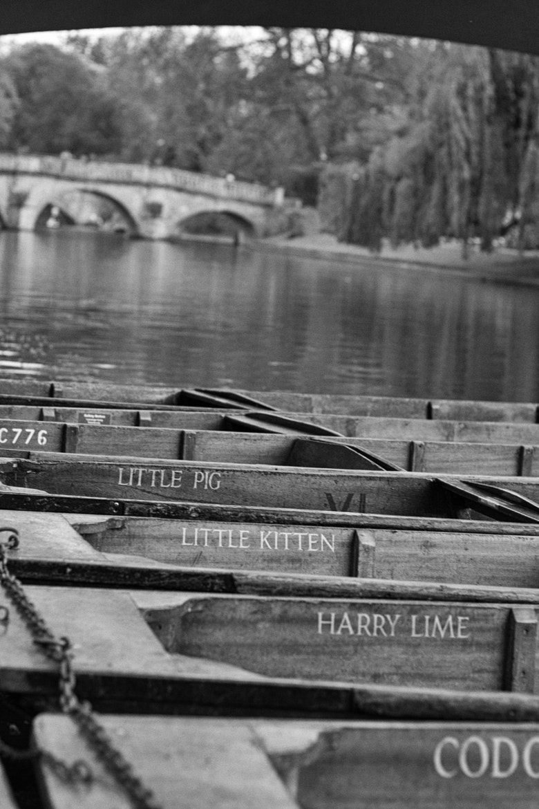 Photograph Punts at Bay by - STOUT - on 500px