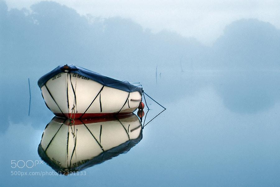 Boat at Dittisham