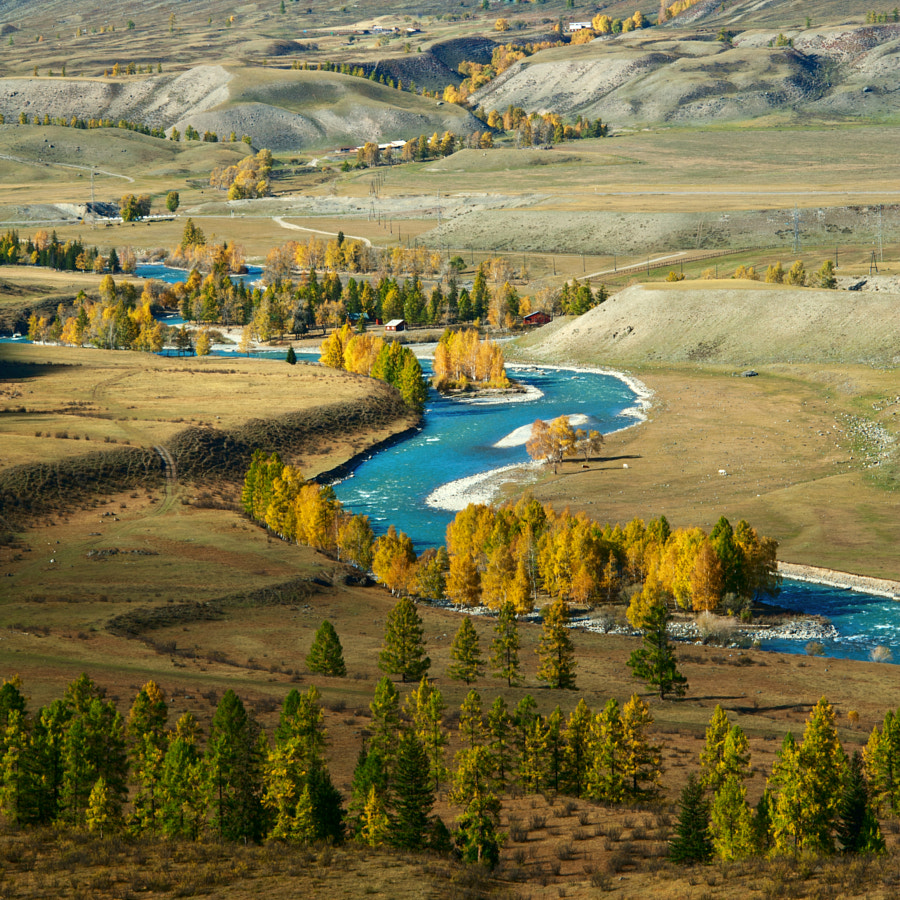 Autumn in Altay valley by Denis Cherkashin on 500px.com