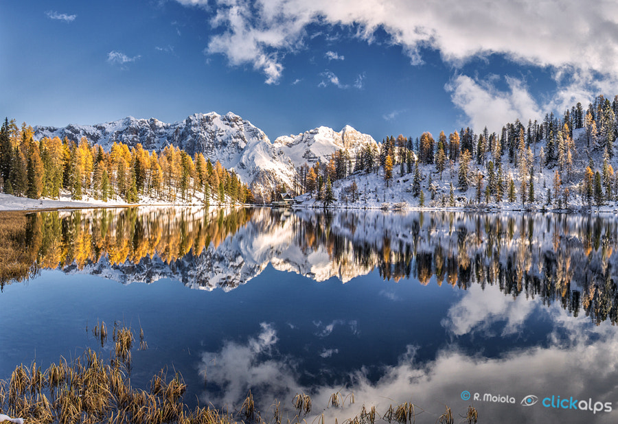 Autumn Appeal by Roberto Sysa Moiola on 500px.com