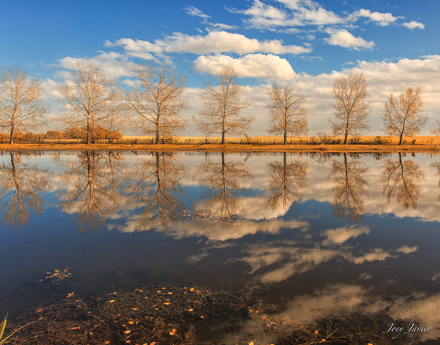 Fall Reflections by Joey Javier on 500px.com
