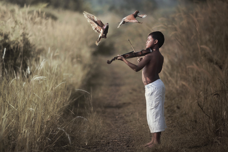 Photograph song for lover by firdaus musthafa on 500px