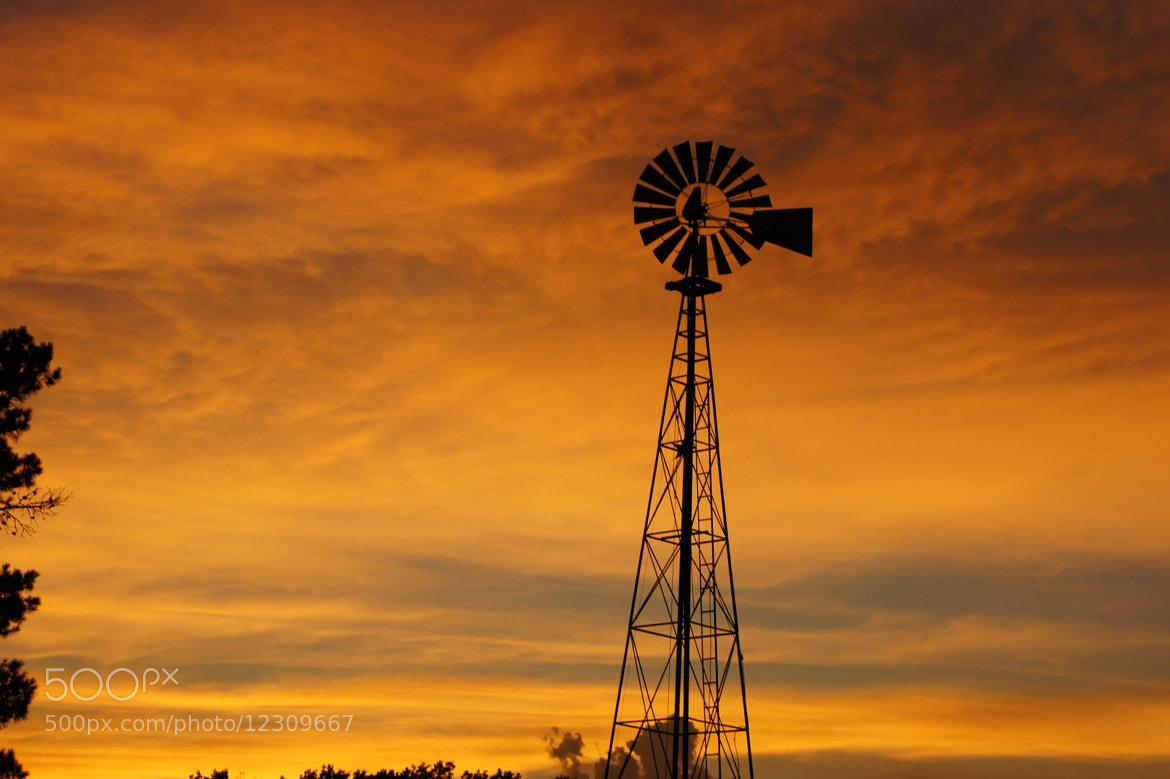 Photograph Windmill by Reda Brooks Foster on 500px