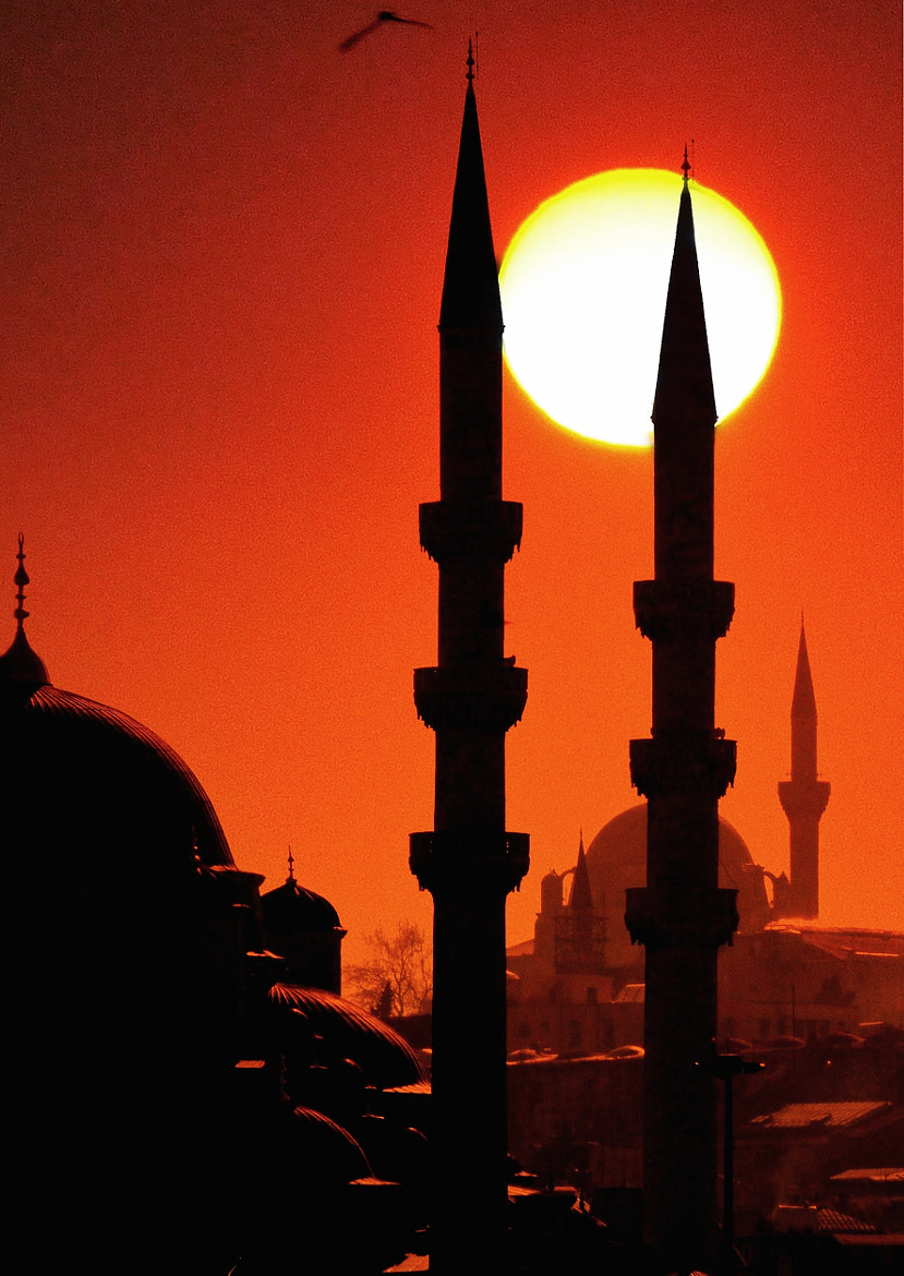Photograph *The Sun Behind of the Mosque* by Elif Energin on 500px