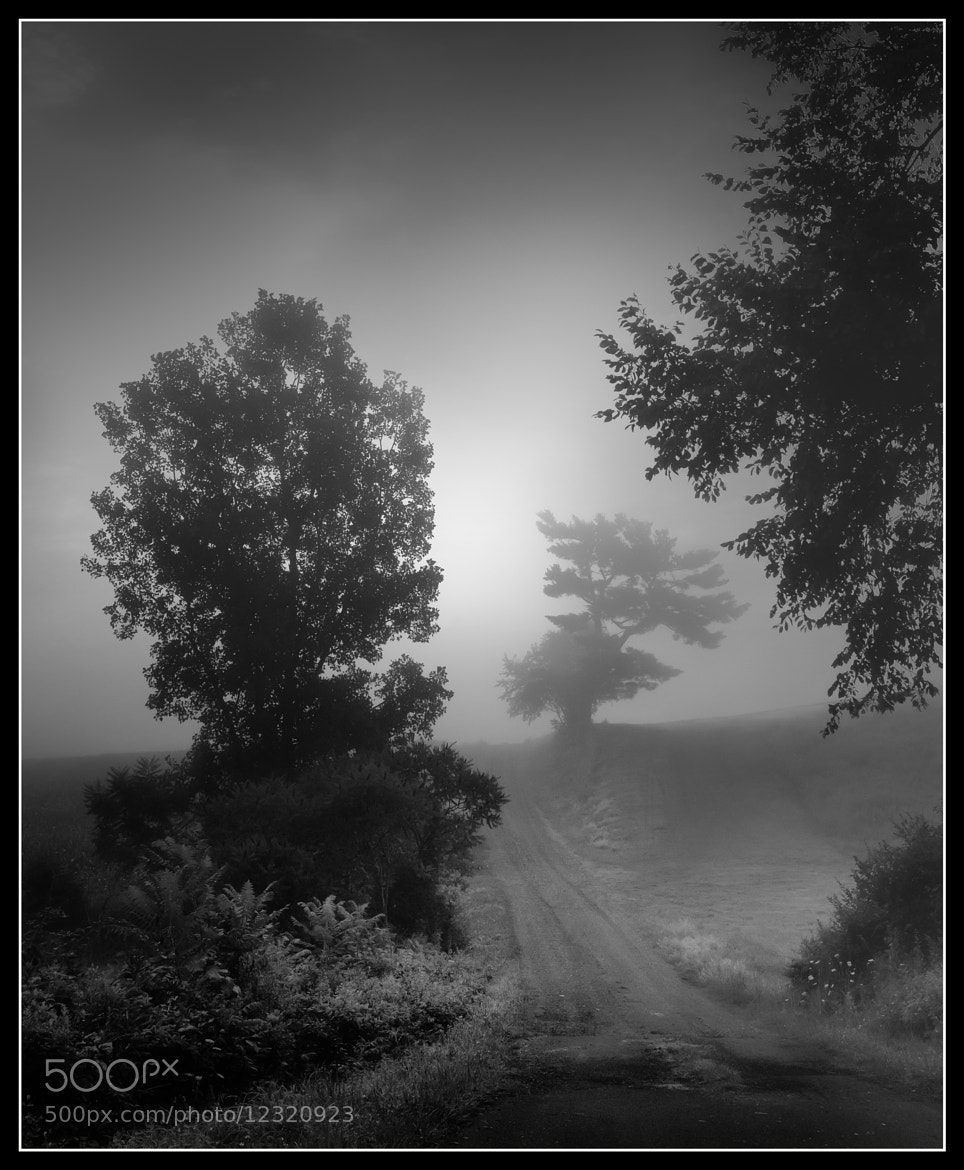 Photograph Down the Dirt Road by Paul Jolicoeur on 500px