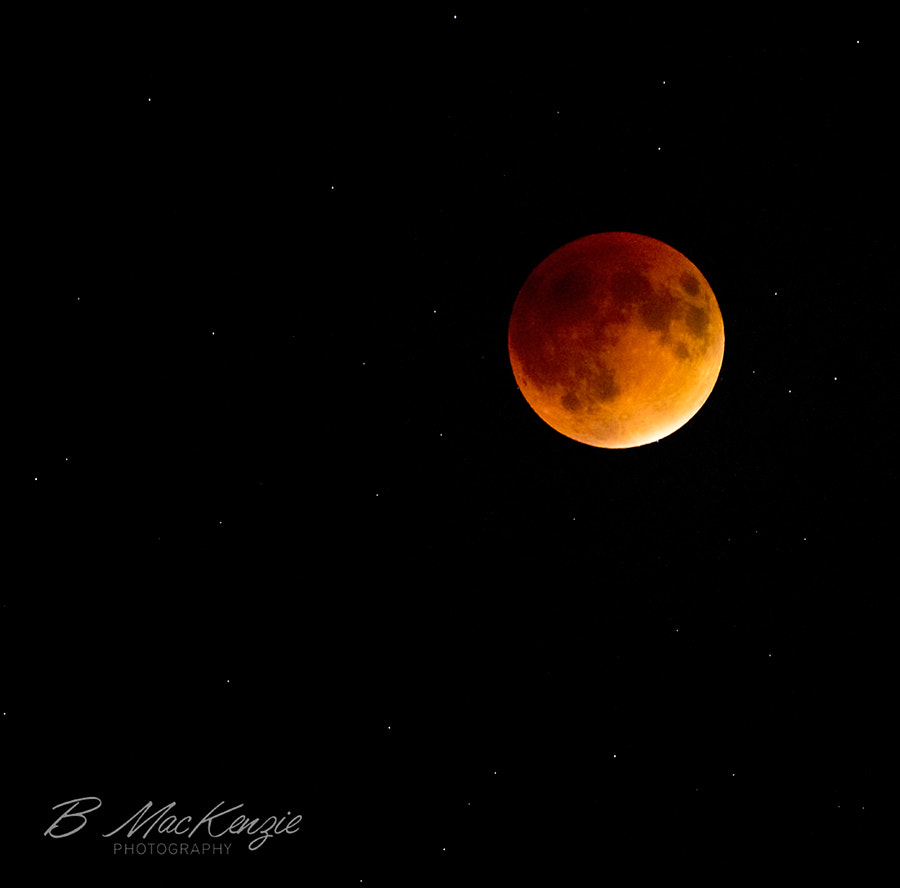 Photograph 2015 Super Blood Moon Eclipse by B MacKenzie Photography on 500px