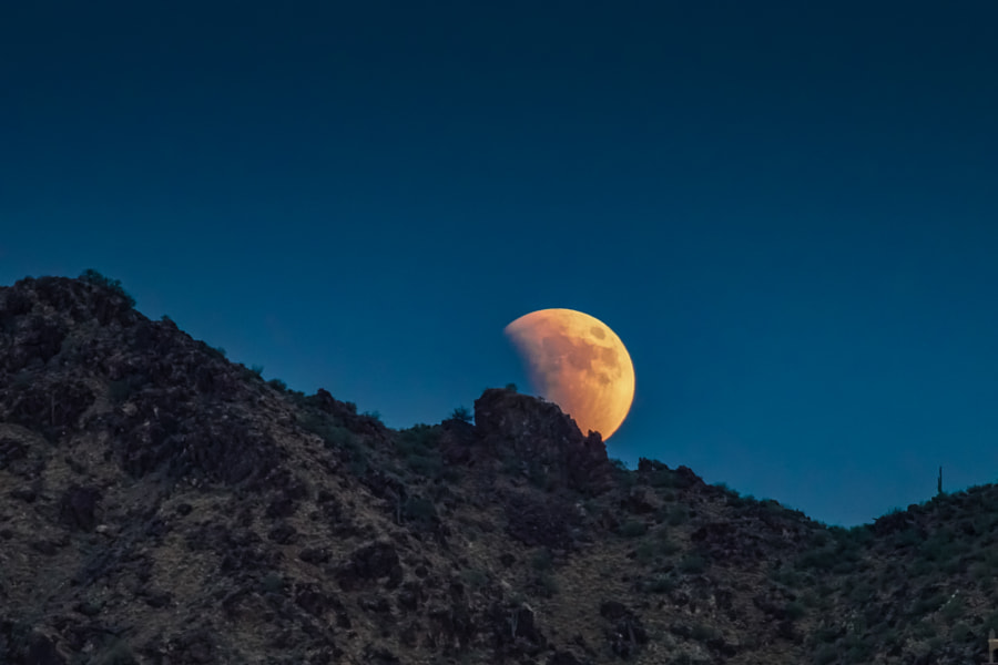 Sonoran Blood Moon and Eclipse by Pat Kofahl on 500px.com