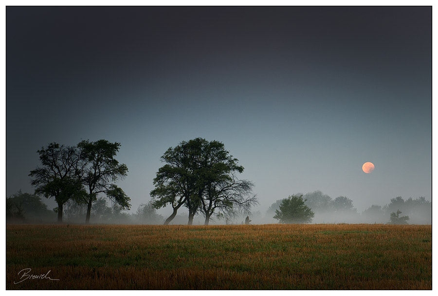 Eclipse by Mariusz Bieniek on 500px.com