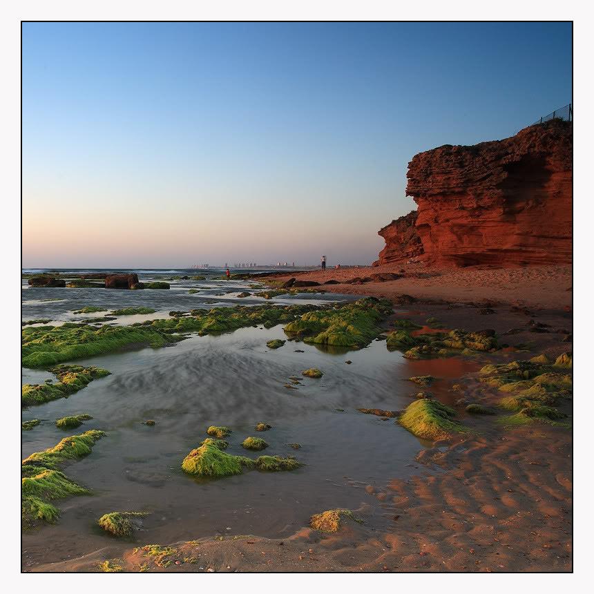 Palmahim beach №1