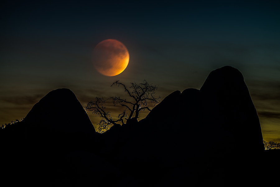 20 minutes before Supermoon Lunar Eclipse by Bon Koo on 500px.com