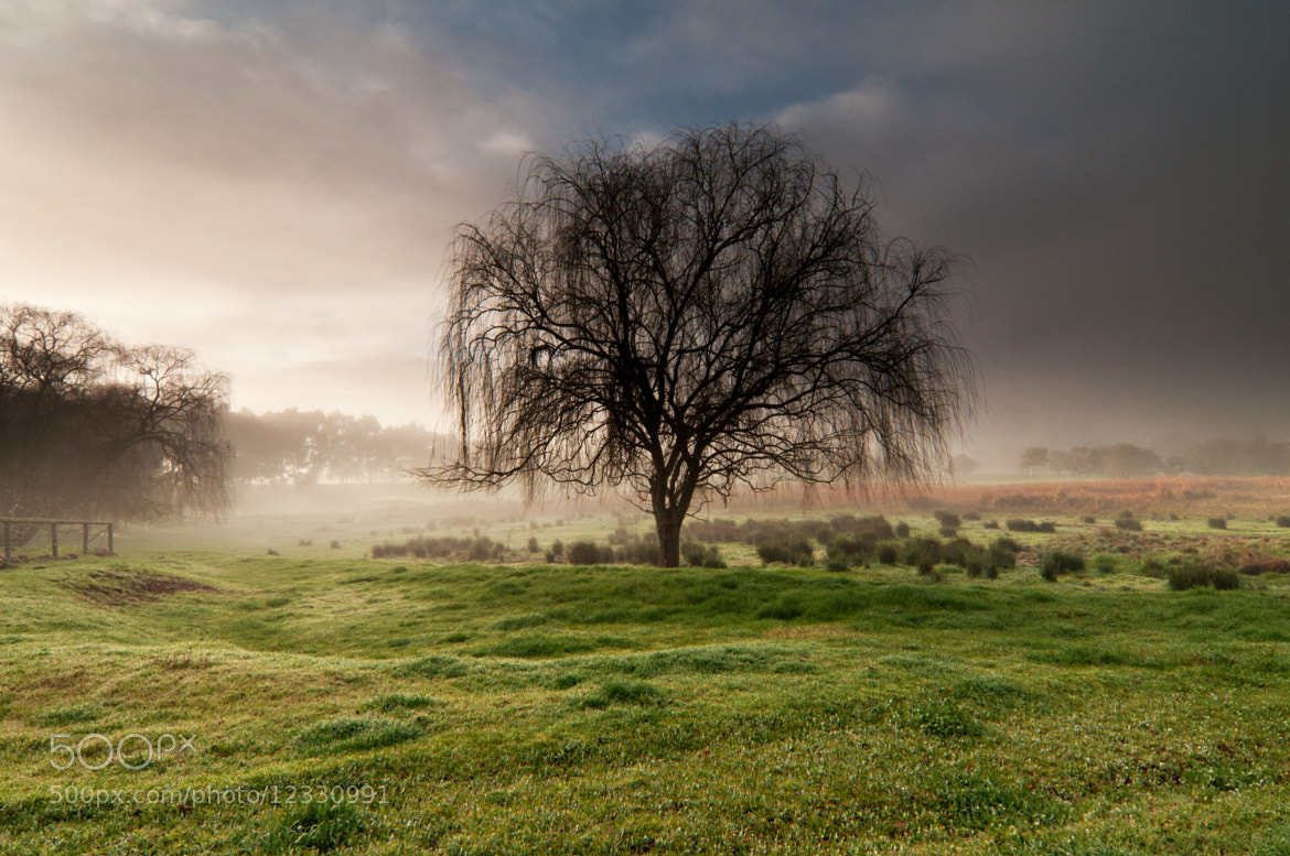 Photograph Mystic Light by Heather Thorning on 500px