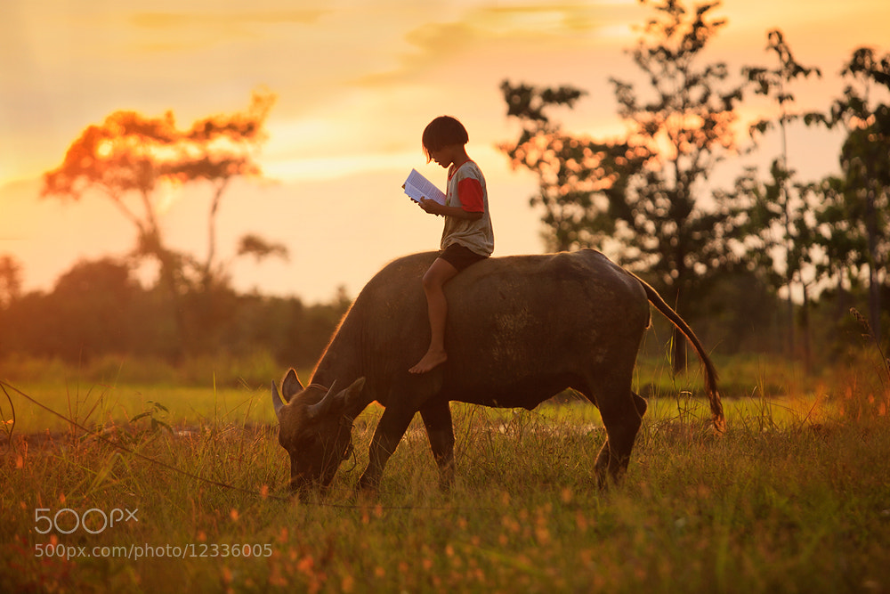 Photograph learning for life  by Saravut Whanset on 500px
