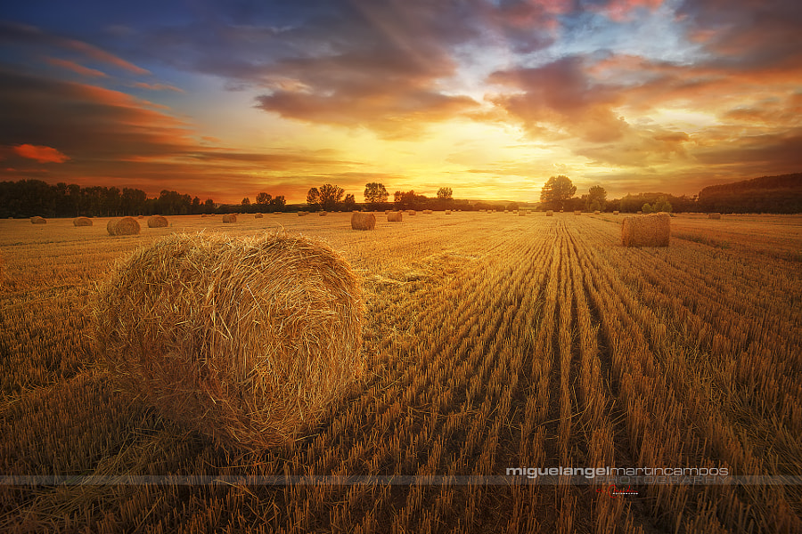 Mi tierra V by Miguel Angel Martín Campos on 500px.com