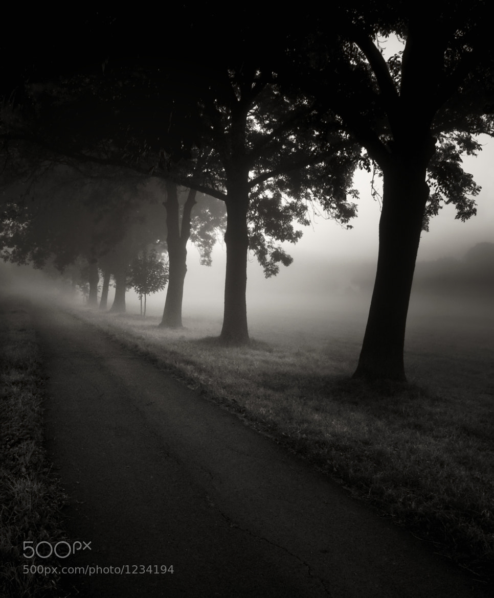 Photograph journey into the unknown... by Jaromir Hron on 500px