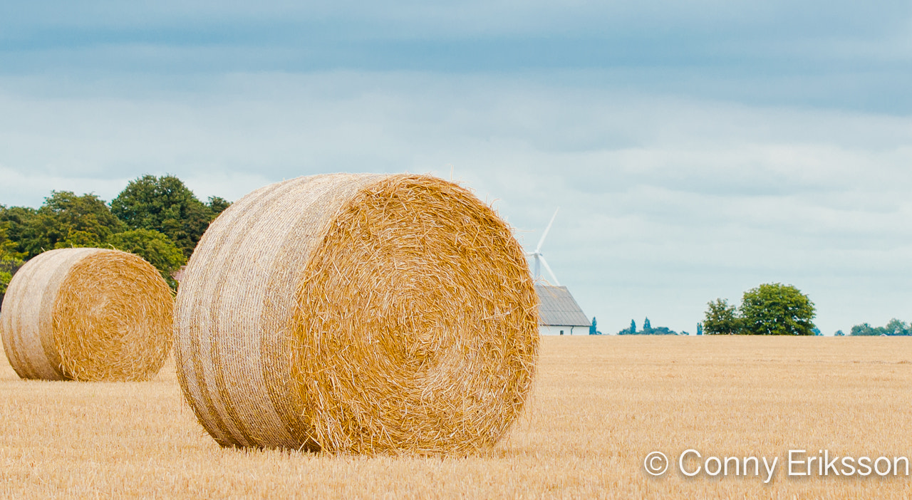 Photograph Harvest time by Conny Eriksson on 500px