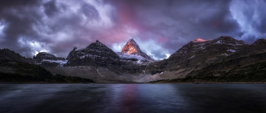 Vertical Lust by Timothy Poulton on 500px.com