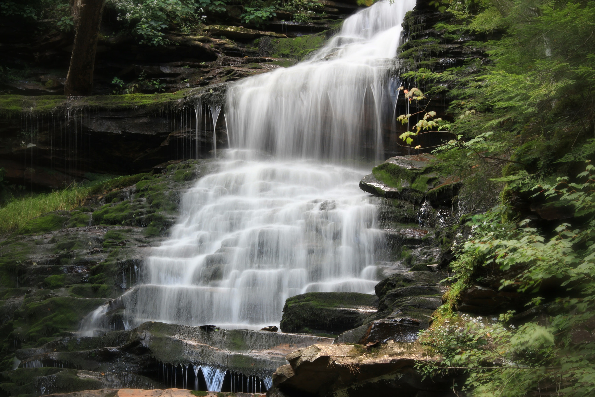 Photograph Ricketts Glen state park - PA 5 by Paul Maillet on 500px