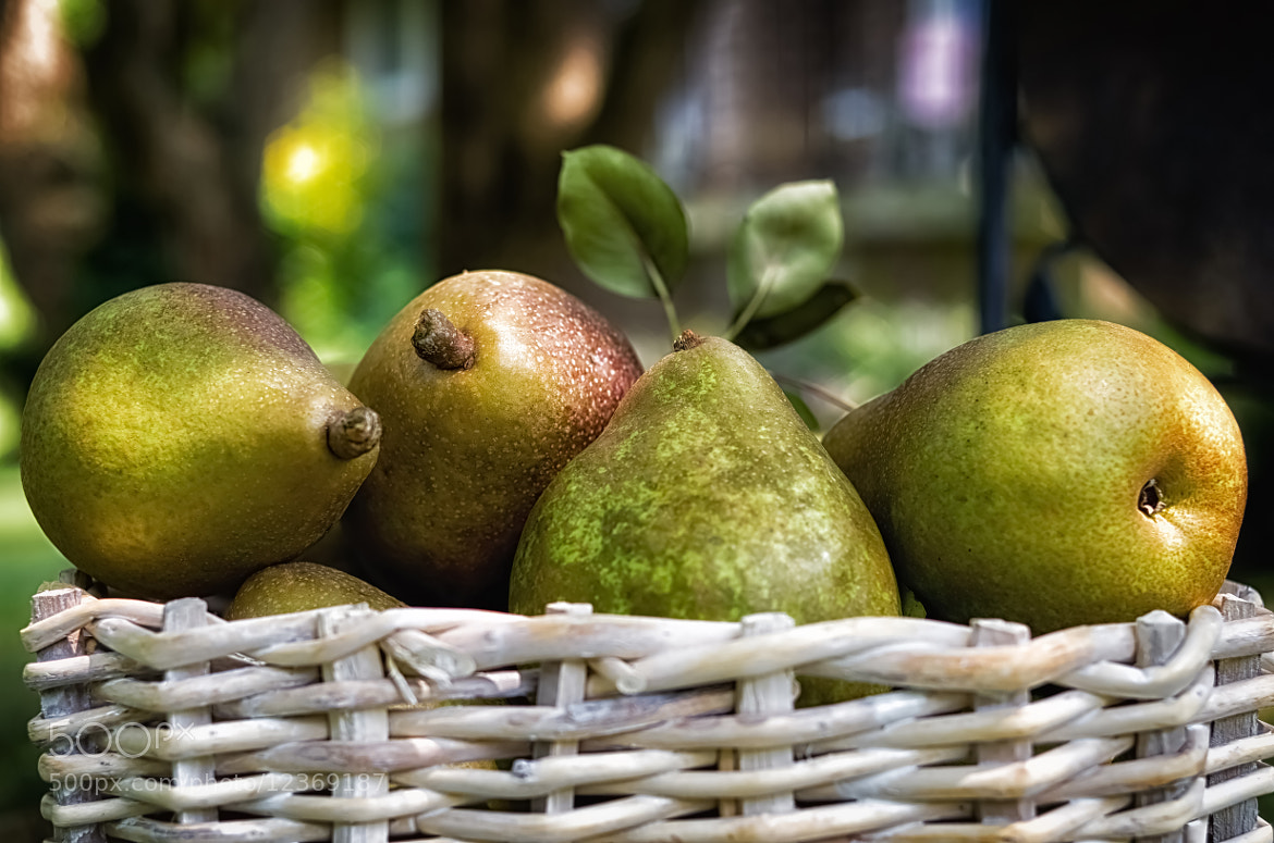 Photograph Basket of Pears by Lori Coleman on 500px
