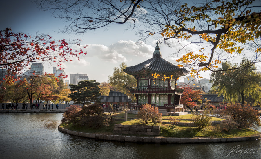 Kyung-Bok Palace by Peter Lee on 500px.com