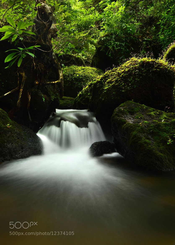 Photograph STREAM-1 by Vinayak  Hegde on 500px