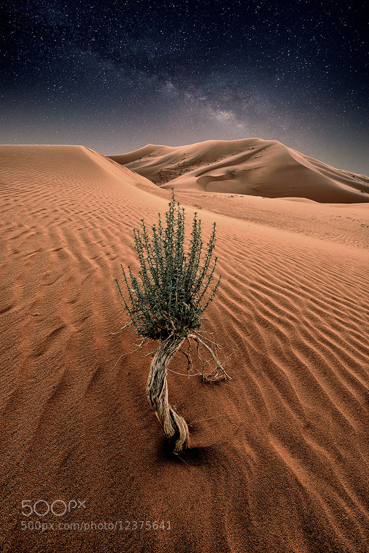 Photograph Quiet Night by Nasser  AlOthman on 500px