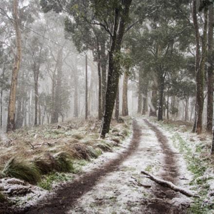 Snow on Mt Warrenheip