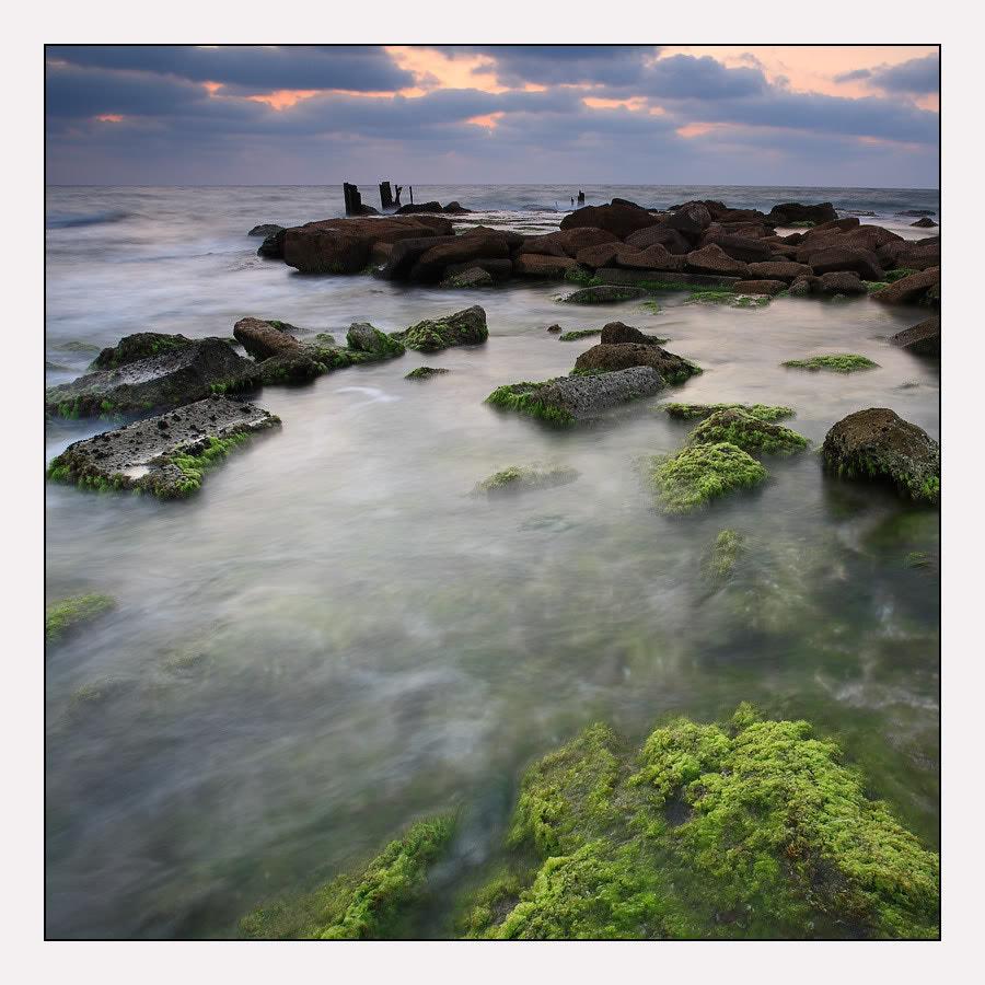 Palmahim beach №2