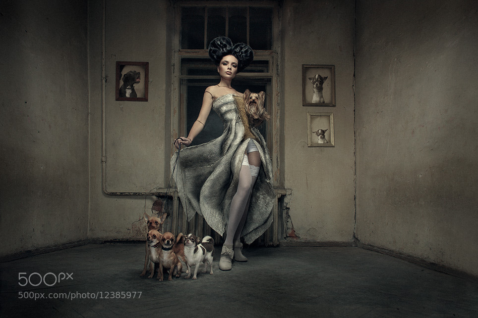 Photograph The Lady with the little dog (Vol. 2) by Kezzyn Waits on 500px