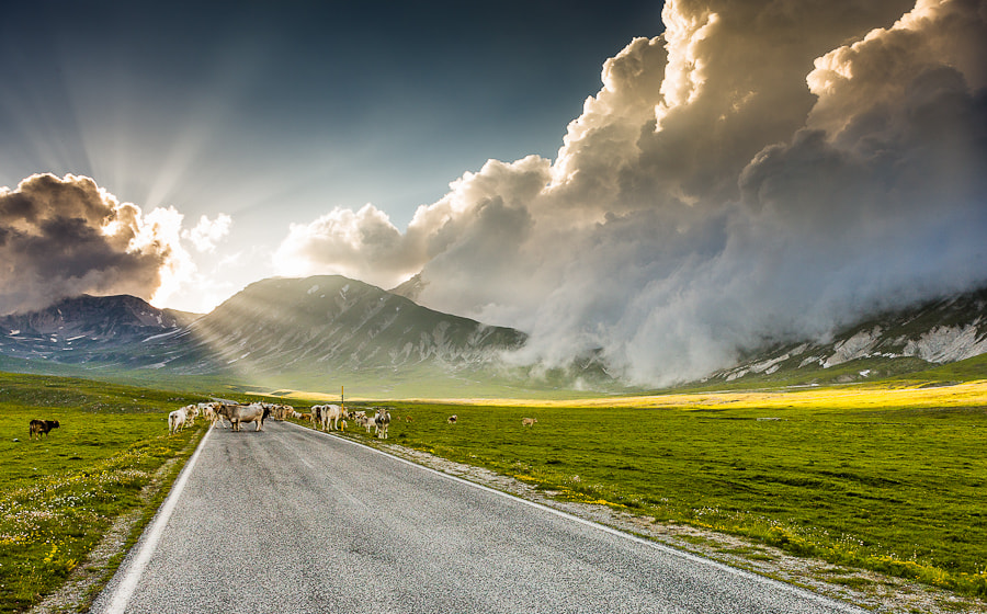 Photograph Campo Imperatore by Hans Kruse on 500px