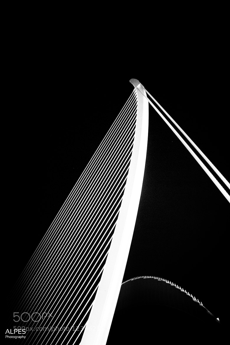 Photograph Lines And Curves by Alexander Peter Seiffert on 500px